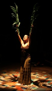 Stacy Trevenon's San Francsico review of Bruja at Magic Theatre