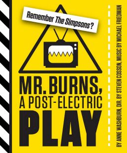 Post image for Regional Theater Review: MR. BURNS, A POST-ELECTRIC PLAY (Woolly Mammoth in D.C.)