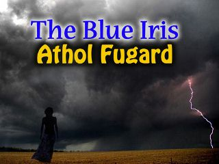 Post image for Los Angeles Theater Review: THE BLUE IRIS (Fountain Theatre)