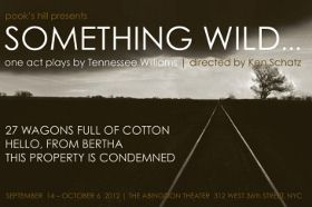 Post image for Off-Off-Broadway Theater Review: SOMETHING WILD… (Abingdon Theater)