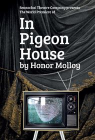 Post image for Chicago Theater Review: IN PIGEON HOUSE (Seanachaí)