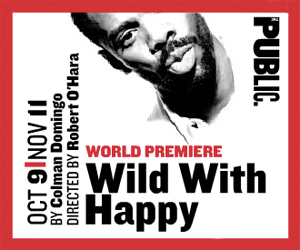 Post image for Off Broadway Theater Review: WILD WITH HAPPY (The Public Theater)