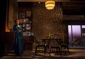 Lawrence Bommer's Stage and Cinema review of OTHER DESERT CITIES at Chicago's Goodman