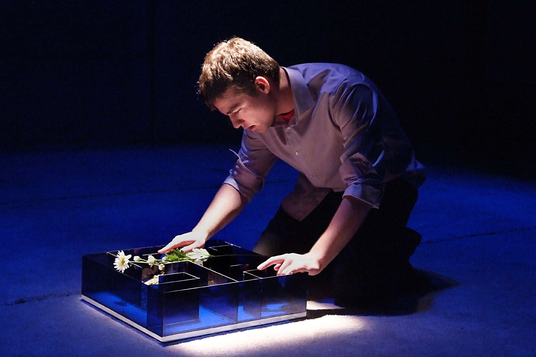 los angeles theater review flowers for algernon deaf west daniel n durant photos by ed krieger flowers for algernon