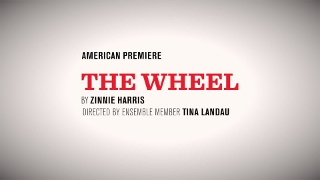 Post image for Chicago Theater Review: THE WHEEL (Steppenwolf)