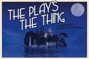 Post image for Off-Broadway Theater Review: THE PLAY'S THE THING (Storm Theatre Company)
