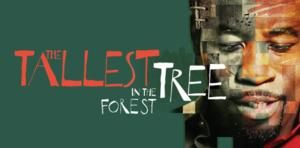 Post image for Regional Theater Review: THE TALLEST TREE IN THE FOREST (La Jolla Playhouse)