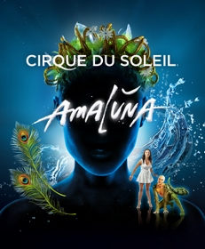 Post image for San Francisco and Tour Theater Review: AMALUNA (Cirque du Soleil)