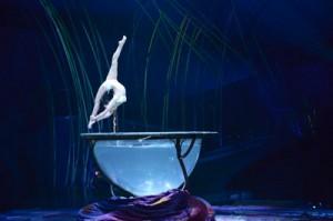 Amaluna Cirque du Soleil, Water Bowl