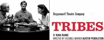 Post image for Chicago Theater Review: TRIBES (Steppenwolf)