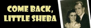 Post image for Los Angeles Theater Review: COME BACK, LITTLE SHEBA (A Noise Within)