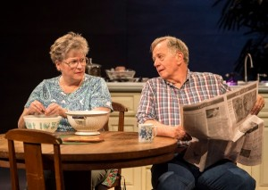 Alyson Reed and Sam Anderson in different words for the same thing at the Kirk Douglas Theatre.