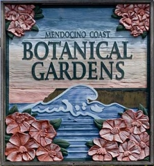 Post image for Regional Attraction Review: MENDOCINO COAST BOTANICAL GARDENS (Fort Bragg, CA)