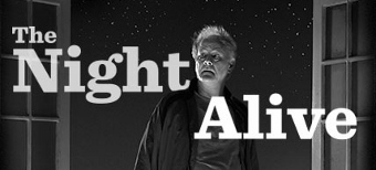 Post image for Chicago Theater Review: THE NIGHT ALIVE (Steppenwolf Theatre Company)