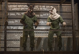 Napoleon (Blake Montgomery) and Snowball (Sean Parris) negotiate leadership in Steppenwolf Theatre Company's production of ANIMAL FARM, a world premiere adaptation by Althos Low, directed by Hallie Gordon.
