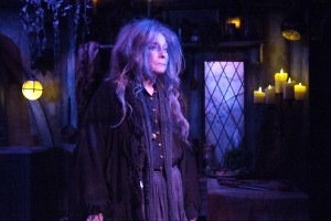 Jenny O'Hara stars in BROOMSTICK at the Fountain Theatre. Photo by Ed Krieger.