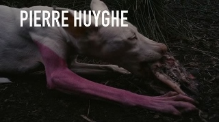 Post image for Los Angeles Art Exhibit Review: PIERRE HUYGHE (Los Angeles County Museum of Art)