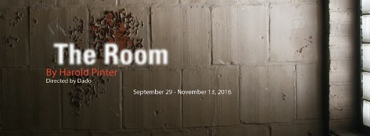 Post image for Chicago Theater Review: THE ROOM (A Red Orchid)
