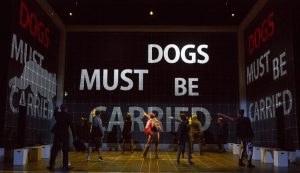 Adam-Langdon-as-Christopher-Boone-and-the-touring-production-of-The-Curious-Incident-of-the-Dog-in-the-Night-Time.