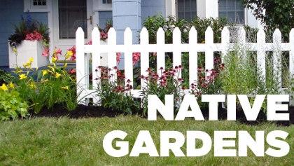 Post image for Chicago Theater Review: NATIVE GARDENS (Victory Gardens Theater)