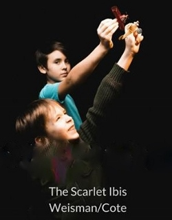 Post image for Review: THE SCARLET IBIS (Chicago Opera Theater)