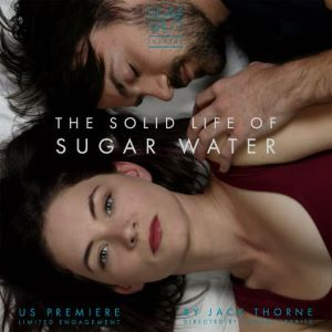 Post image for Los Angeles Theater Review: THE SOLID LIFE OF SUGAR WATER (Deaf West Theatre at Inner-City Arts)