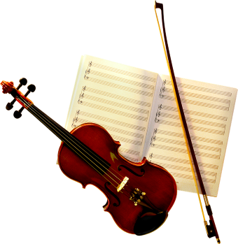 Post image for Music Extras: WHAT IS A CELLO BOW MADE OF?