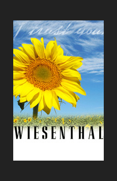 Post image for Theater Review: WIESENTHAL (The Wallis)
